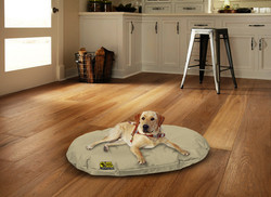 dog on beige oval bed with background