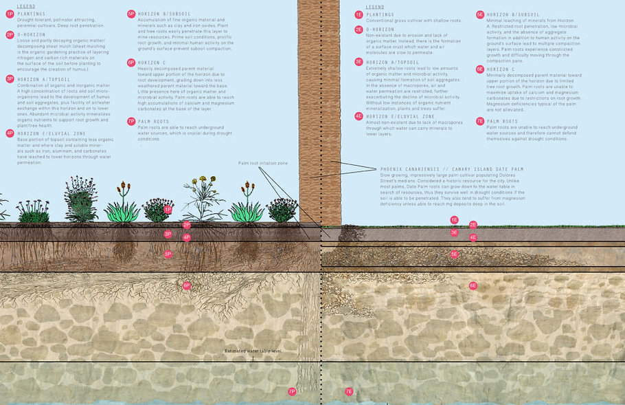 Soil-Regeneration-960x737.jpg