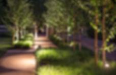 Night_front_walk_C8W0428-960x639.jpg