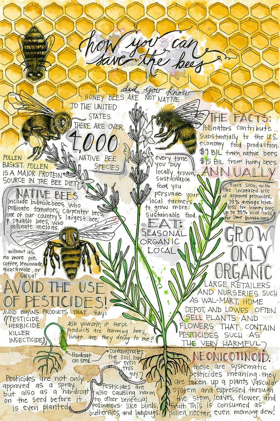 Bee-Poster-by-Megan-Stevens.jpg