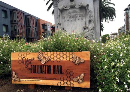 Dolores Pollinator Blvd