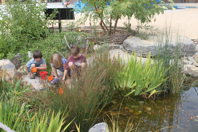 "The recirculating stream is cleansed by a ""biofilter,"" Northern California's first naturally-filtered, permitted, and installed water play area."