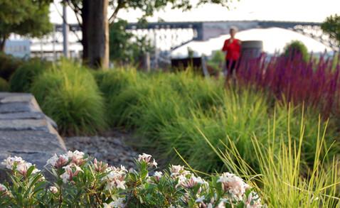 Meriwether Condominiums: Willamette River Greenway