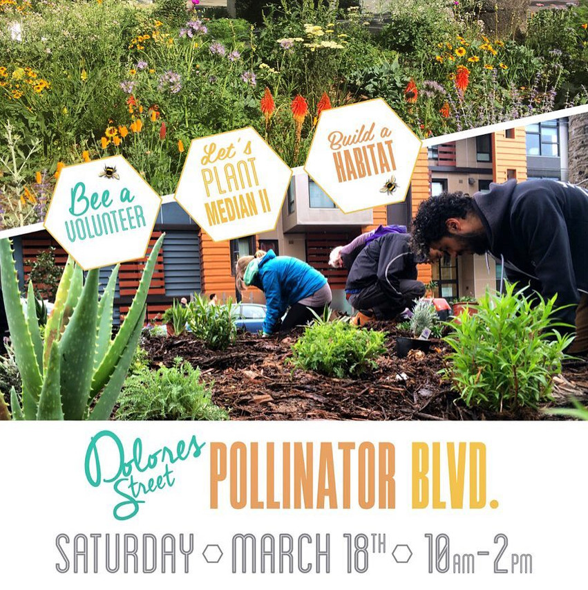Dolores Pollinator Blvd: Volunteer poster