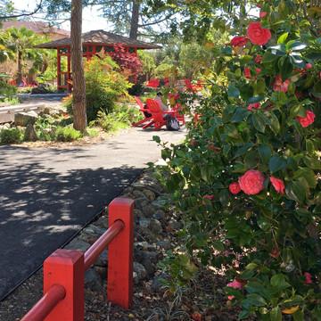 Sequoia High School Japanese Tea Garden