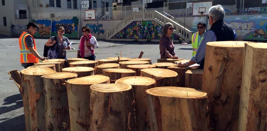 Salvaging urban timber for schoolyard nature playgrounds