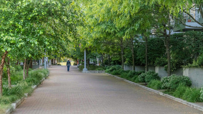 The Meriwether gardens