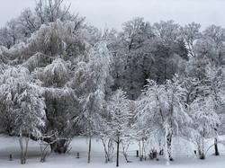 FrozenWonderlandPeterson
