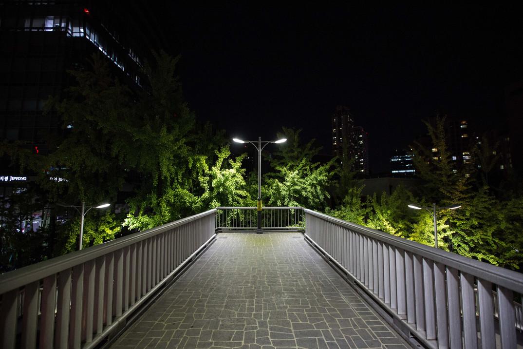 seoul street night #8