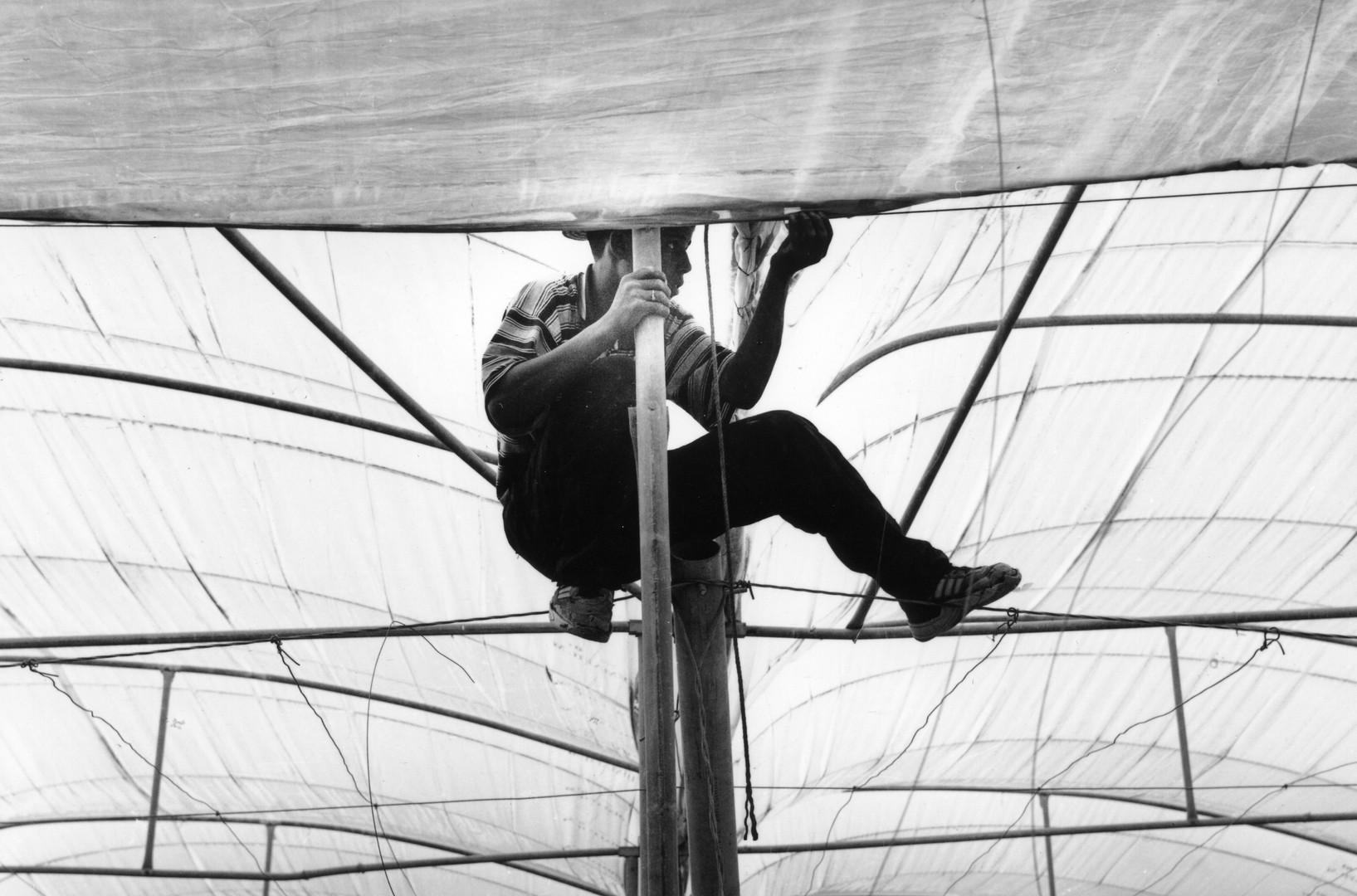 acrobaties rurales #3