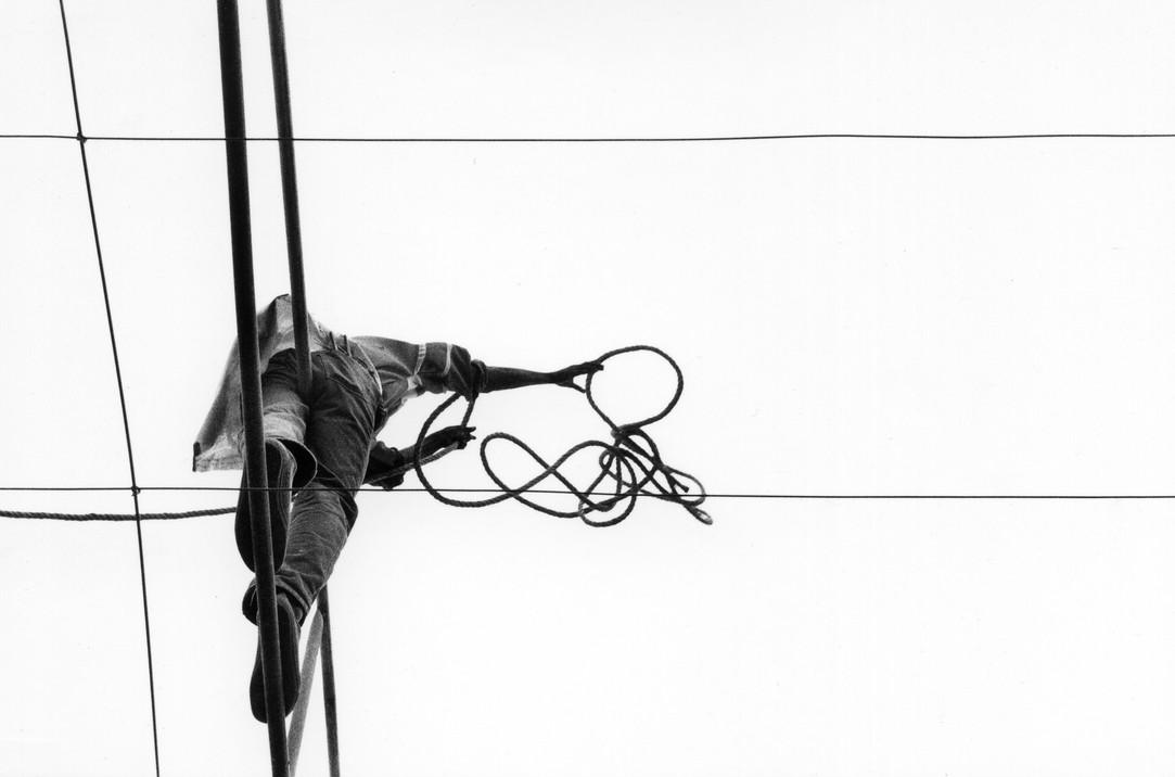 acrobaties rurales #10