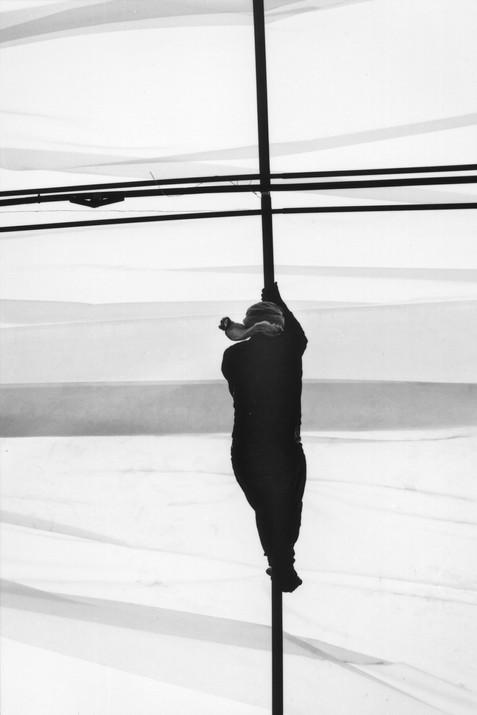 acrobaties rurales #14