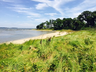 Beach on the Chester River at Ferry Point Park