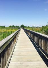 Boardwalk Trail to Ferry Point