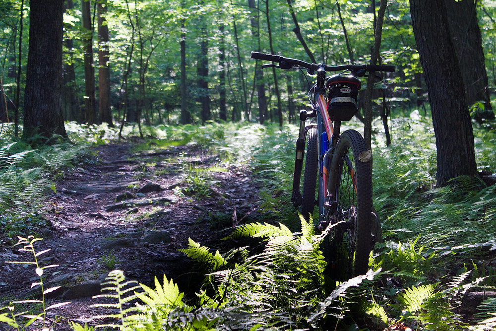 Solo Mountain Bike Ride @ Francis Slocum State Park
