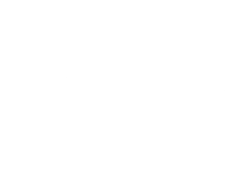 Logo - LONG Transgress Studios.png
