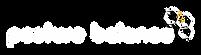לוגו לבן pb.png