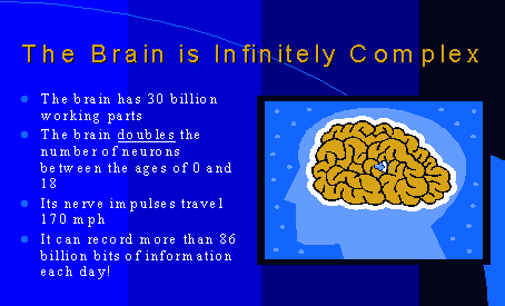 A Brain Treat for the Holidays