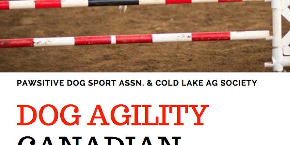 Dog Agility Canadian Region Championships