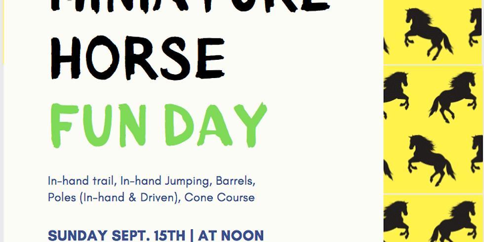 Miniature Horse Fun Day