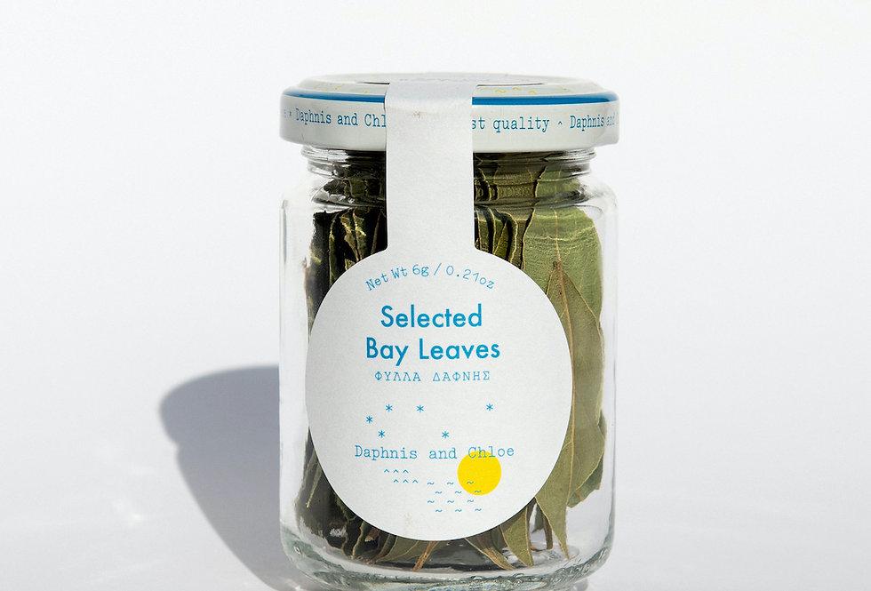 Selected Bay Leaves Jar