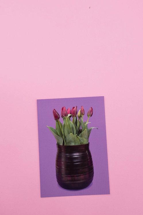 """violette Tulpen"" Postkarte"