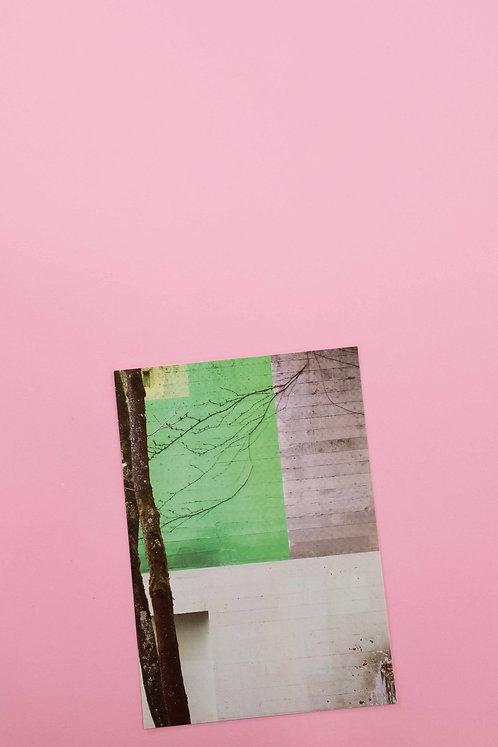 """""""Baum"""" Postkarte"""