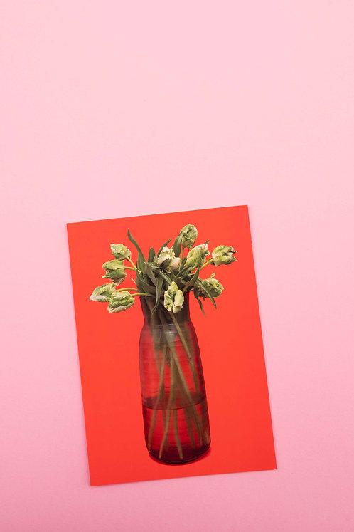 """""""Krokodil Tulpen"""" Postkarte"""