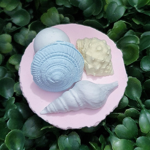 Seashell on Mac