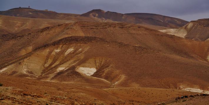 Judean Wilderness4.jpg
