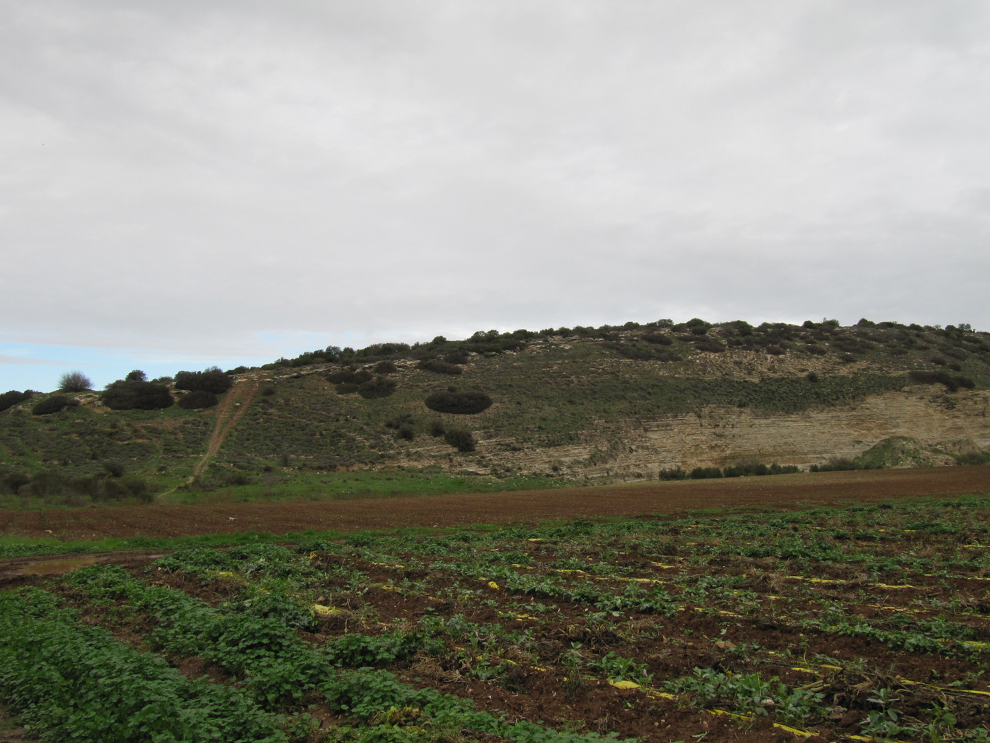 Valley of Elah David and Goliath 1.jpg