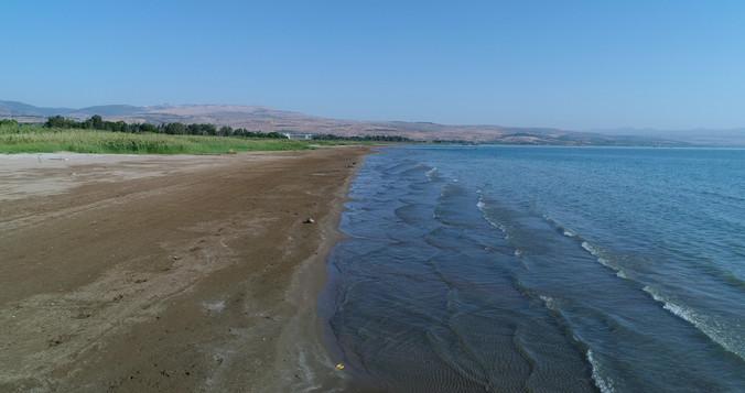 Drone shot Sea of Galilee shore.jpg
