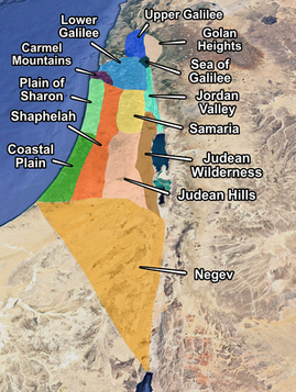 Areas of Israel.png