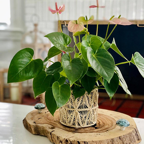 Iraca Pyramid Vase