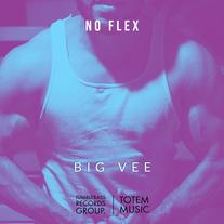 Big Vee - No Flex
