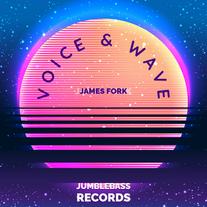 James Fork - Voice & Wave