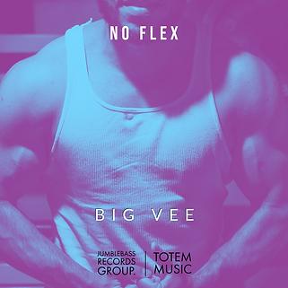 NO FLEX.png