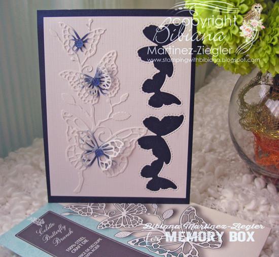 Memory Box, Bibliana Martinez-Ziegler