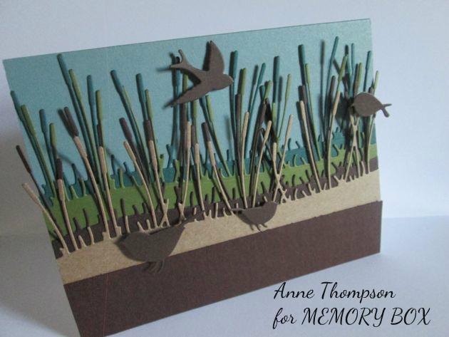 Memory Box, Anne Thompson