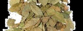 Laurier en feuilles - 10Gr