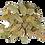 Thumbnail: Laurier en feuilles - 10Gr