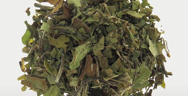 Thé blanc  - PAI MU TAN - BIO - Teatower