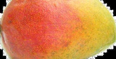 Mangue - 1 Pièce