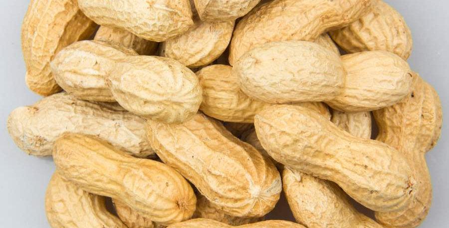 Cacahuète de Chine avec coque - 250 gr