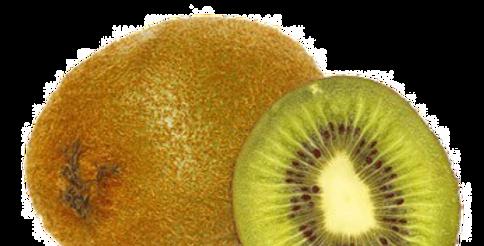 Kiwi (Vert) - 1 Pièce