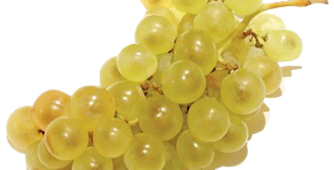 Raisin Blanc - 500Gr
