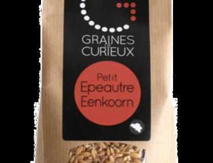 Le Petit-épeautre grains - Graines de Curieux - 500Gr