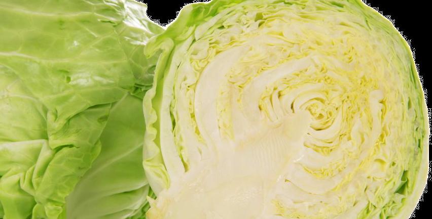 Chou Blanc - 1 Pièce