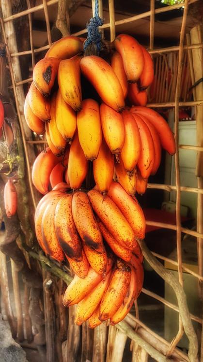 Sri lanka bannanas