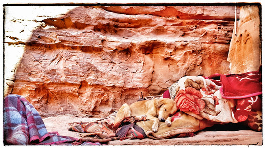 Up in the mountans of petra